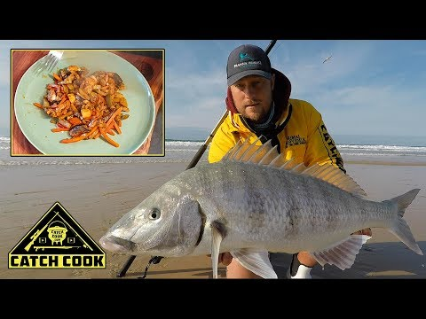 Beach Camping, Big Steenbras And Blacktail - Catch Cook - South Africa