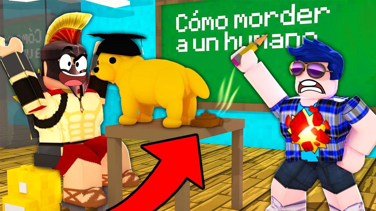 El Profesor Timba Nos Expulsa Nuestro Perrito Va A La Escuela Los Compas En Roblox Adopt Me Youtube