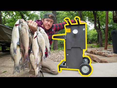 Limit Out White Bass Fishing & NEW Awesome Fish Fryer!