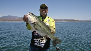 Fishing with Johnny Johnson - Roosevelt Lake, AZ – Swimbaits as Search Tool – April, 2015