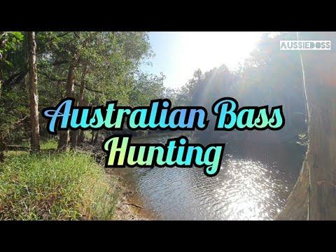 Land Based Fishing, Teddington, Wide Bay, *Australian Bass Hunting* (Ep01)