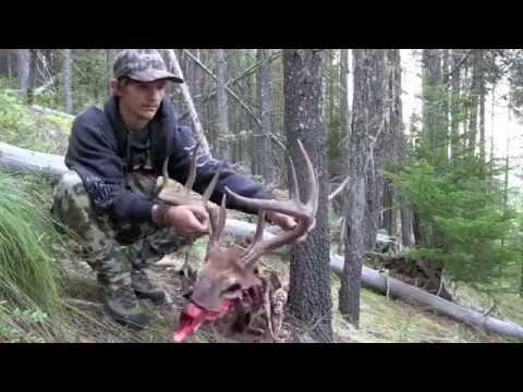 2015 Panhandle North Idaho Elk Hunting Brandon Pitcher