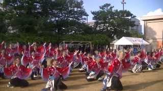 福井大学よっしゃこい2013年度演舞「夢光咲」 フェニックス祭り二日目、...