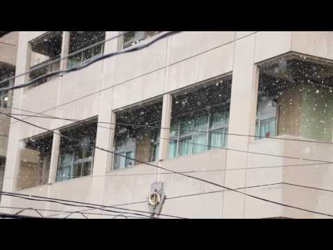 November Snowfall After 54 Years||Video By Krishna Kharel||