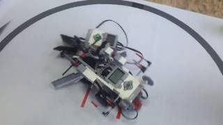 Робо-сумо. Кружок робототехники в Самаре