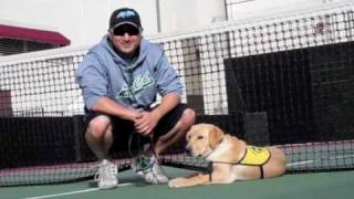 Puppy In Training Tv - Ep6 - Los Caballeros Tennis And Puppy Training