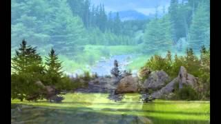 Хвойные леса))))