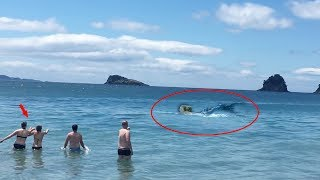 7 Real Life Mermaid Sightings Caught On Camera #2