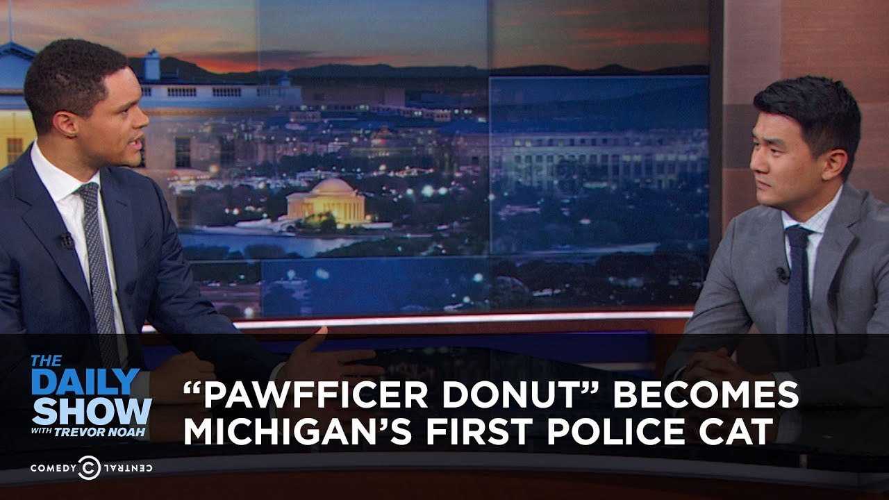 pawfficer-donut-becomes-michigan-s-first-police-cat-the-daily-show