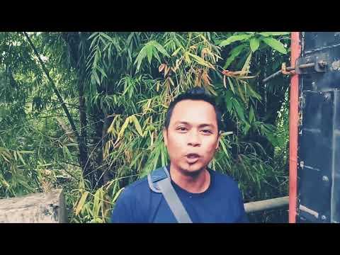 liputan om adella live siang tadi di tanah merah || Bangkalan - Madura