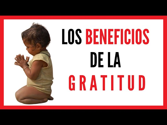 Los grandes beneficios de ser agradecidos   El Aviso Magazine