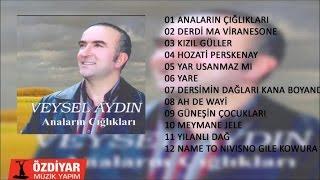Veysel Aydın - Meymane Jele (Official Audio) Resimi