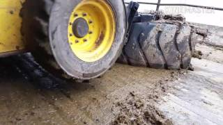 A cleaning day: Scraping manure and feeding cows