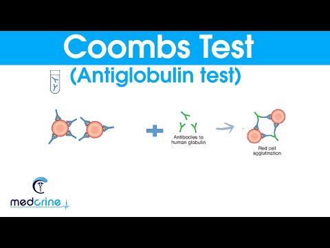 COOMBS TEST (antiglobulin test) made simple