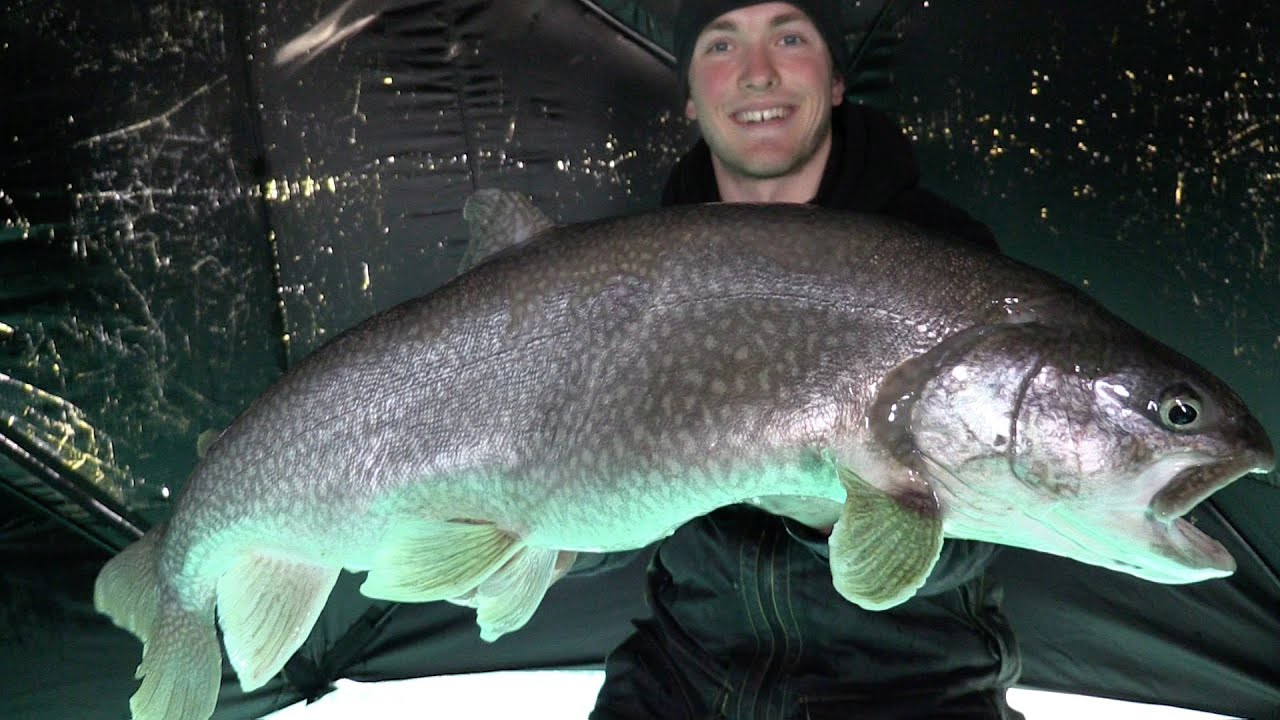 Ice fishing monster lake trout youtube for Lake trout ice fishing