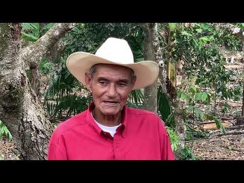 Meet the God Father of Honduras Coffee Beans