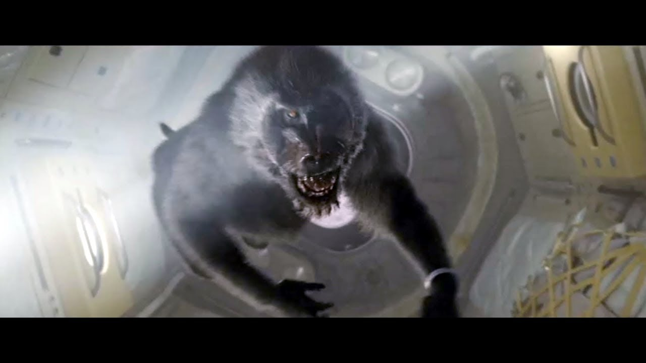 Baboons in Space - AD ASTRA - YouTube
