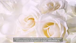 Где отметить свадьбу в Израиле г. Эйлат 052-9555881