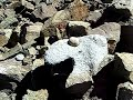 Необычная находка в районе горы Кайлас