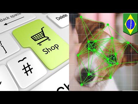 Pet Shop Ini Gunakan Scan Wajah Anjing Untuk Belanja Online - TomoNews