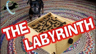 The Labyrinth Game  Ripley Solves A New Dog Puzzle