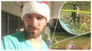 LOST DOG APPEARS IN VLOGGING FOOTAGE!