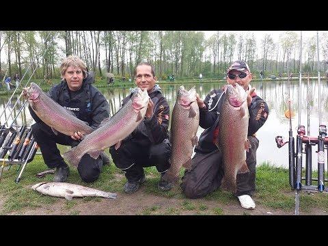 de wild vissen