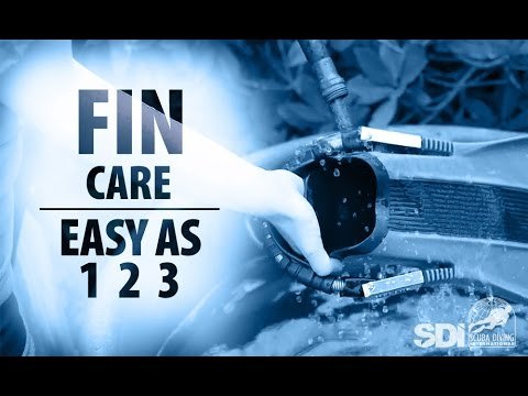 Mask, Snorkel & Fins | Fin Care: Easy as 1-2-3