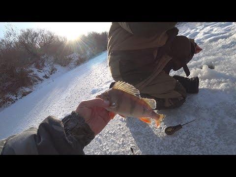 видео: ЗИМНЯЯ РЫБАЛКА началась! ПЕРВЫЙ ЛЕД успешно открыт!!! Ловля рыбы на красивой реке!