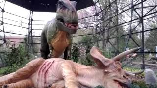 This is a great exhibit for kids! From the Memphis Zoo website: Din...