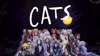 劇団四季:キャッツ:東京公演プロモーションVTR:2018年8月開幕