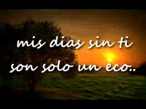 Moscas En La Casa Shakira Con Letra With Lirycs Youtube
