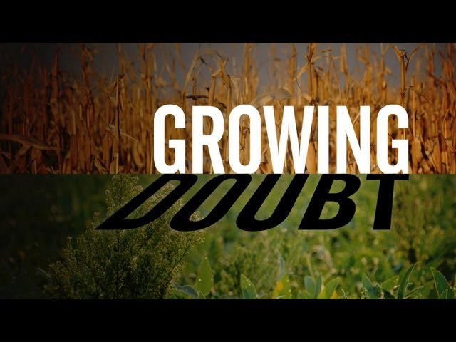 Growing Doubt