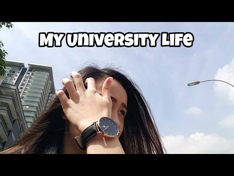 my university life A conclusion: university life has changed my life significantly make sure you balance your study life with work life and social life and i can assure you, you're making the most of your student life.