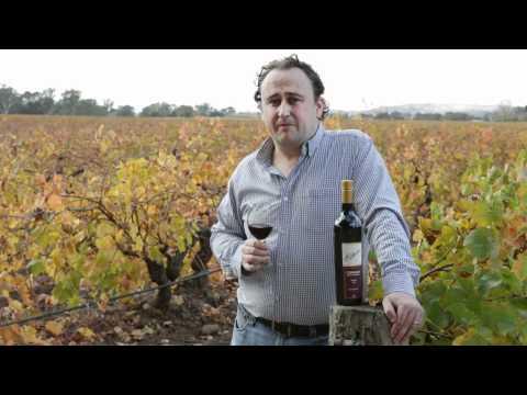 Barossa Rare & Distinguished: Elderton Wines