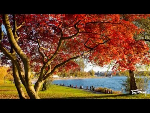Vancouver BC - The most beautiful place on earth (Ultra HD 4