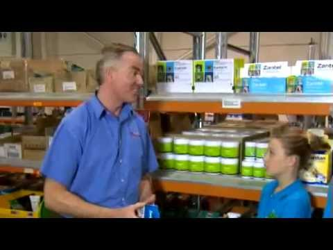 Vet Products Direct Online Pet Store - All About Animals TV Show