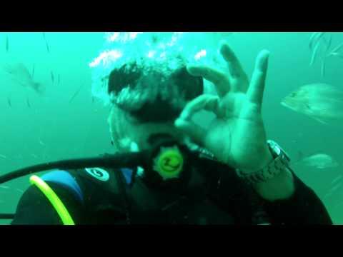 Chicken Coop 2 Scuba Diving
