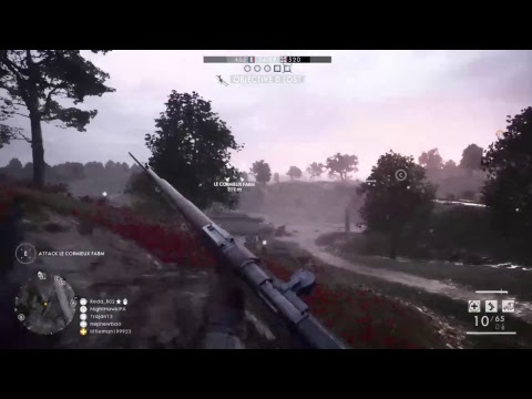 Battlefield 1 Online: Support i need back up