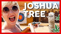 420 FRIENDLY Retreat in JOSHUA TREE! (Hicksville Trailer Palace)
