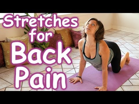 hqdefault - Back Pain Stretching Exercises