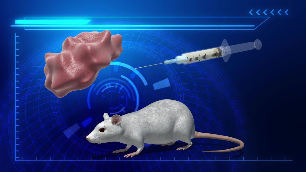New cancer 'vaccine' completely eliminates tumors in mice