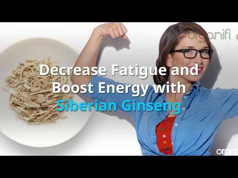 13 benefits of Siberian Ginseng