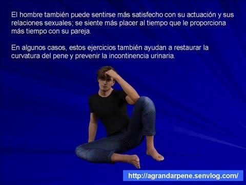 peneperfecto pdf