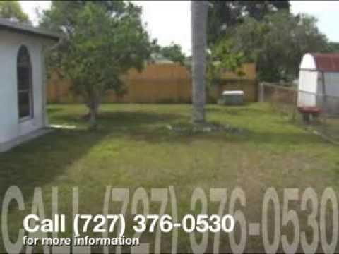 New Port Richey Florida Real Estate | Robbins Team