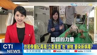 【新聞精華】20210110 抓不完! 綠鬣蜥肆虐 台灣侏儸紀公園!?