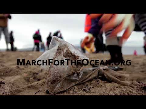 Amy Stewart - get Involved - Protect what you LOVE - March For the Ocean! (M4O)