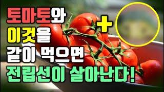 토마토와 이것을 같이 …