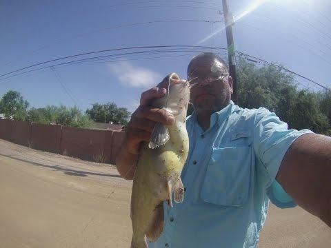 Arizona Canal Catfishing
