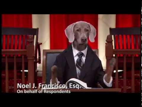 NLRB v. Noel Canning #PuppyJustice